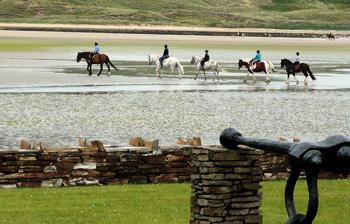 Killyhoey Caravan Park